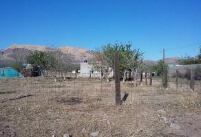 Foto de terreno habitacional en venta en  , méxico 91, chihuahua, chihuahua, 10666093 No. 01