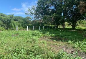 Foto de terreno habitacional en venta en méxico , francisco medrano, altamira, tamaulipas, 19200460 No. 01