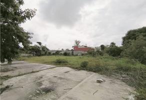 Foto de terreno habitacional en venta en  , miami, carmen, campeche, 0 No. 01