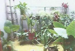 Foto de casa en venta en michoacán , jacarandas, tlalnepantla de baz, méxico, 0 No. 01