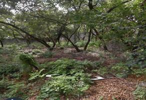 Foto de terreno habitacional en venta en miguel de cervantes , valle de san ángel sect español, san pedro garza garcía, nuevo león, 9225193 No. 01