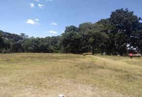 Foto de terreno habitacional en venta en miguel hidalgo 0000, tlalpan centro, tlalpan, df / cdmx, 0 No. 01