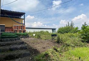 Foto de terreno habitacional en venta en  , miguel hidalgo 2a sección, tlalpan, df / cdmx, 0 No. 01