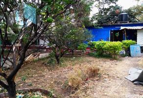 Foto de terreno habitacional en venta en miguel hidalgo , centro, yautepec, morelos, 0 No. 01
