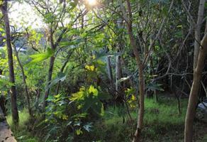 Foto de terreno habitacional en venta en miguel hidalgo , lago de guadalupe, cuautitlán izcalli, méxico, 6566760 No. 01