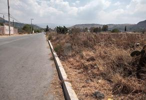 Foto de terreno habitacional en venta en miguel hidalgo , san nicolás tlaminca, texcoco, méxico, 0 No. 01