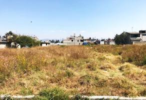 Foto de terreno habitacional en venta en miguel hidalgo , san pedro totoltepec, toluca, méxico, 17785535 No. 01
