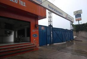 Foto de nave industrial en renta en  , miguel hidalgo, xochitepec, morelos, 11299477 No. 01