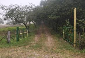 Foto de terreno habitacional en venta en mil novecientos veintidós , barrio del cementerio, pueblo viejo, veracruz de ignacio de la llave, 0 No. 01