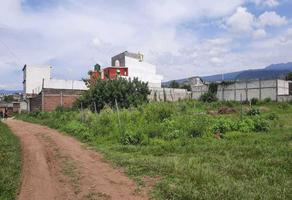 Foto de terreno habitacional en venta en  , milpillas, cuernavaca, morelos, 16305213 No. 01