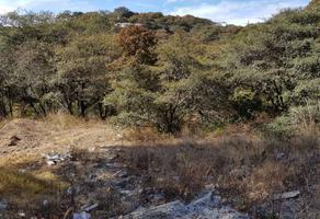 Foto de terreno habitacional en venta en mimbres , rancho san juan, atizapán de zaragoza, méxico, 10726771 No. 01