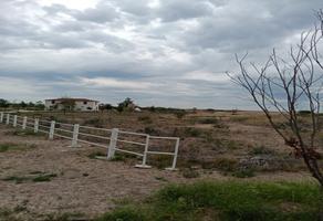 Foto de terreno habitacional en venta en  , mina, mina, nuevo león, 9898255 No. 01