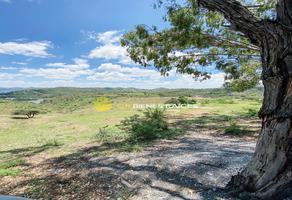 Foto de terreno comercial en venta en mineral de santa ana 1, guanajuato centro, guanajuato, guanajuato, 0 No. 01