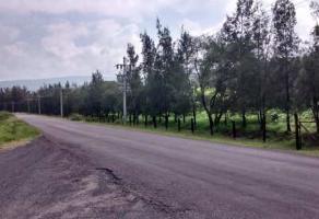 Foto de terreno comercial en venta en miraflores , juanacatlan, juanacatlán, jalisco, 10857201 No. 01