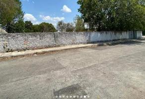 Foto de terreno habitacional en venta en  , miraflores, mérida, yucatán, 0 No. 01