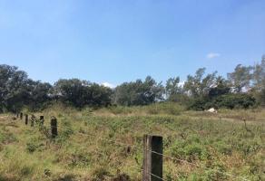 Foto de terreno habitacional en venta en  , miramapolis, ciudad madero, tamaulipas, 11700816 No. 01