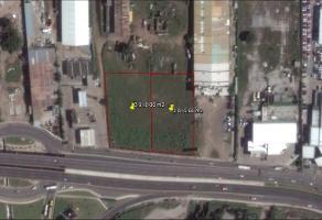 Foto de terreno habitacional en venta en  , miramar, altamira, tamaulipas, 11700613 No. 01