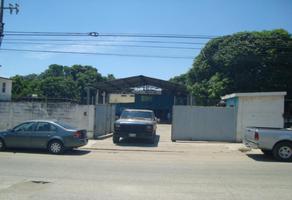 Foto de bodega en renta en  , miramar, altamira, tamaulipas, 12904816 No. 01