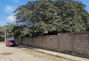 Foto de terreno habitacional en renta en  , miramar, altamira, tamaulipas, 0 No. 01