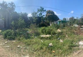 Foto de terreno habitacional en venta en  , miramar, altamira, tamaulipas, 18837147 No. 01