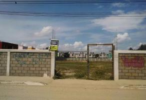 Foto de terreno habitacional en renta en  , miramar, ciudad madero, tamaulipas, 11804115 No. 01