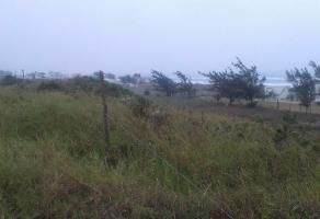 Foto de terreno habitacional en venta en  , miramar, ciudad madero, tamaulipas, 11804119 No. 01