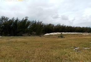 Foto de terreno habitacional en venta en  , miramar, ciudad madero, tamaulipas, 12838421 No. 01