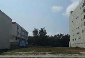 Foto de terreno habitacional en venta en  , miramar, ciudad madero, tamaulipas, 0 No. 01