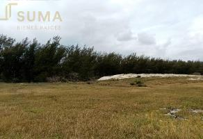 Foto de terreno habitacional en venta en  , miramar, ciudad madero, tamaulipas, 16708114 No. 01