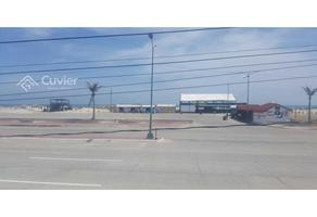 Foto de terreno habitacional en renta en  , miramar, ciudad madero, tamaulipas, 18120779 No. 01