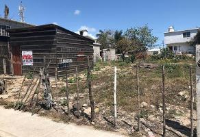 Foto de terreno habitacional en venta en  , miramar, ciudad madero, tamaulipas, 8838755 No. 01