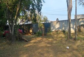 Foto de terreno comercial en renta en miramar , ejido ricardo flores magón, altamira, tamaulipas, 11337015 No. 01