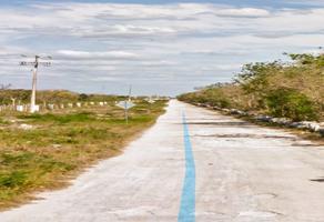 Foto de terreno habitacional en venta en  , misne iii, mérida, yucatán, 19320766 No. 01