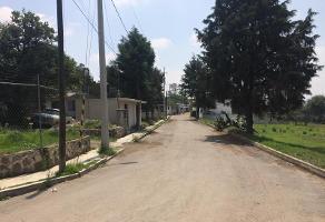 Foto de terreno habitacional en venta en moctezuma 4, san luis apizaquito, apizaco, tlaxcala, 4639062 No. 01