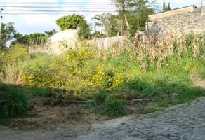Foto de terreno habitacional en venta en monacillo 16, palmira tinguindin, cuernavaca, morelos, 0 No. 01