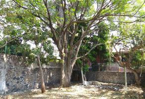 Foto de terreno habitacional en venta en monancillo 11, palmira tinguindin, cuernavaca, morelos, 6763349 No. 01