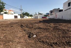 Foto de terreno comercial en renta en  , monte alban, mérida, yucatán, 13453809 No. 01