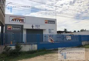Foto de nave industrial en renta en  , monte alto, altamira, tamaulipas, 11728984 No. 01