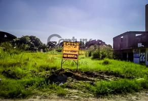 Foto de terreno habitacional en renta en  , monte alto, altamira, tamaulipas, 19378667 No. 02