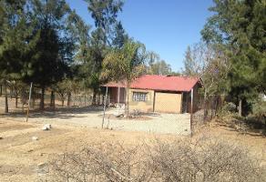 Foto de terreno habitacional en venta en monte everest , comanjilla (hotel balneario), silao, guanajuato, 10715910 No. 01