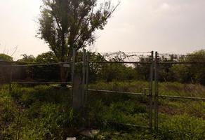 Foto de terreno habitacional en venta en  , monte kristal, juárez, nuevo león, 0 No. 01