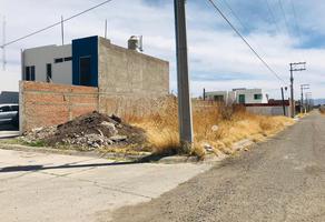 Foto de terreno habitacional en venta en monte palomas s/n , residencial las palmas, durango, durango, 0 No. 01