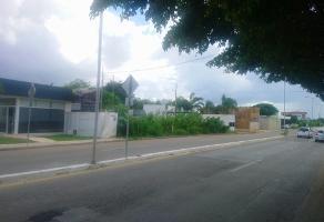 Foto de terreno habitacional en renta en  , montebello, mérida, yucatán, 10825846 No. 01