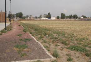 Foto de terreno habitacional en renta en  , montecillo, texcoco, méxico, 11691904 No. 01