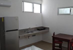 Foto de departamento en renta en  , montejo, mérida, yucatán, 13851185 No. 01