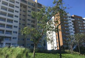 Foto de departamento en renta en  , montejo, mérida, yucatán, 14255236 No. 01
