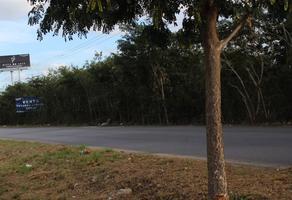 Foto de terreno comercial en venta en  , montejo, mérida, yucatán, 19244795 No. 01