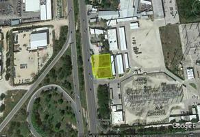 Foto de terreno habitacional en renta en  , montejo, mérida, yucatán, 0 No. 01
