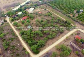Foto de terreno habitacional en venta en  , montemorelos centro, montemorelos, nuevo león, 0 No. 01
