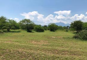 Foto de terreno habitacional en venta en montemorelos rayones , el pastor, montemorelos, nuevo león, 0 No. 01